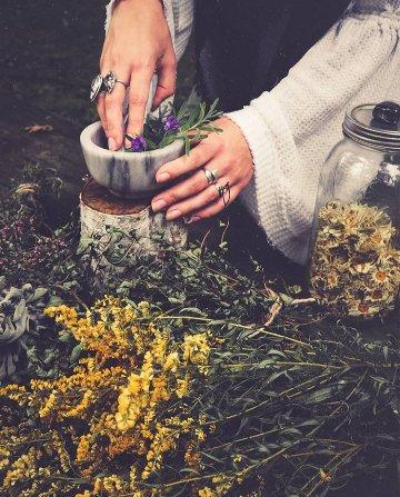 Corso erbe e magia - Online